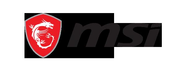 Logo MSI - 600 x 225 pixel