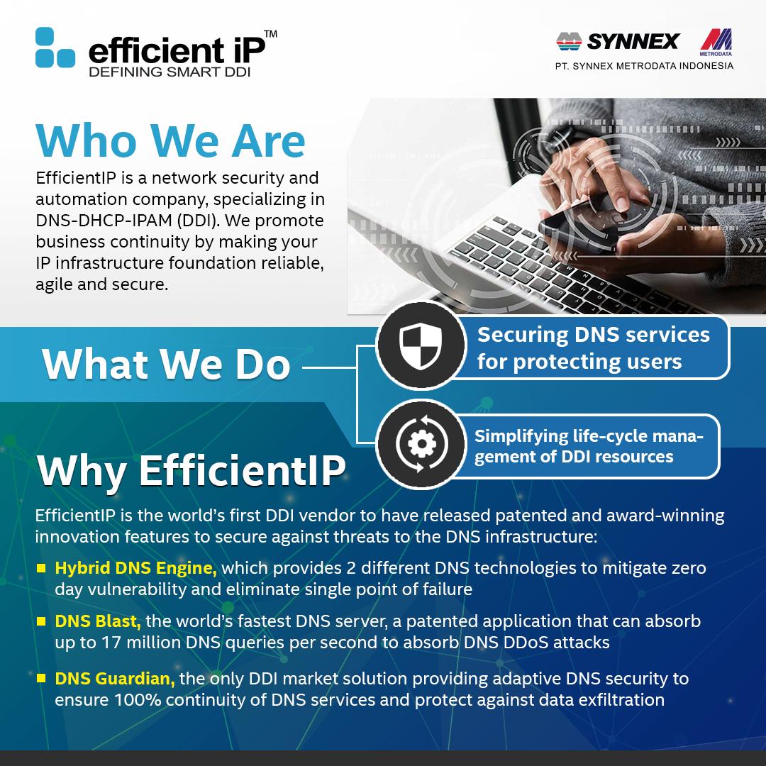 https://www.synnexmetrodata.com/wp-content/uploads/2021/01/Efficient-IP-Who-we-are.jpg