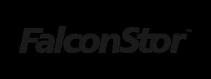 Logo-Falconstor-600-x-225-pixel-min